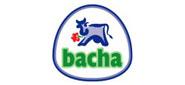 Bacha