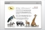 Braas Program Motywacyjny - E-mailing teaser