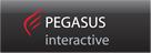 PEGASUS INTERACTIVE - Agencja interaktywna